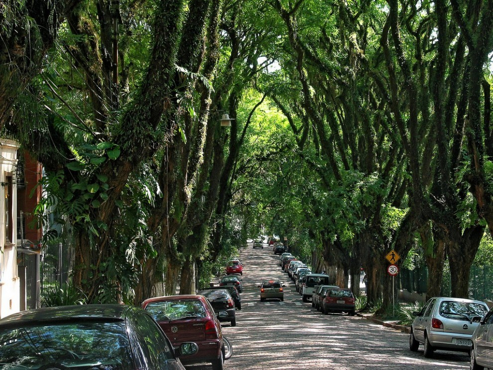 ป่าในเมือง 2
